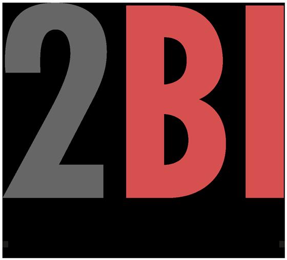 2BI Solutions
